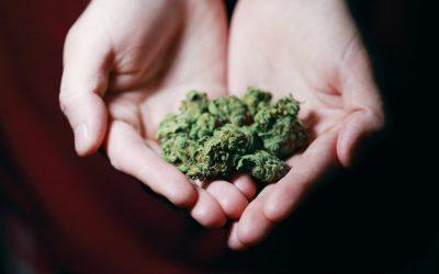 Pacientes de cannabis medicinal piden la reapertura de los clubes de usuarios de cannabis, para no recurrir al mercado negro